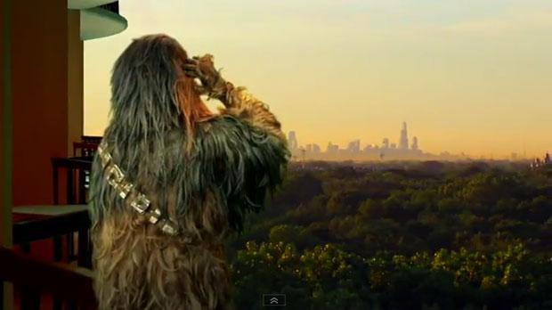 Chewbacca Bachelor